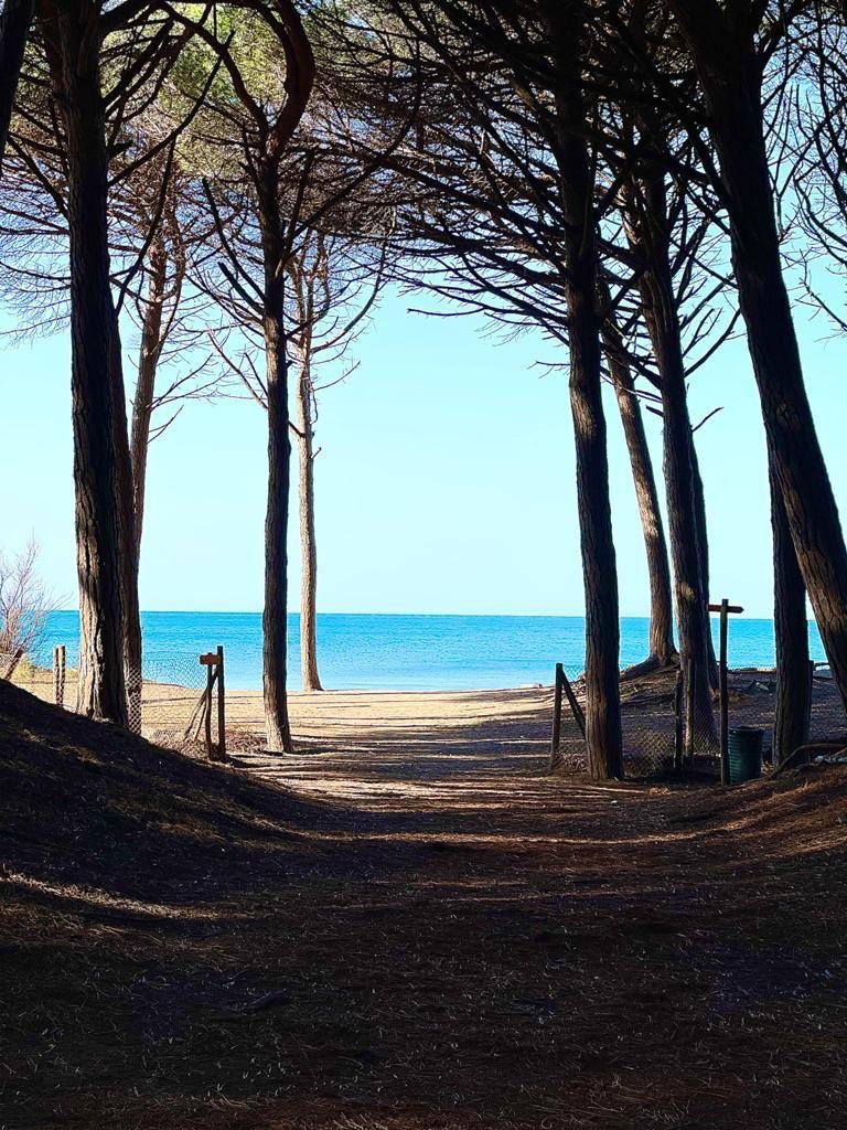 il mare della Costa Toscana